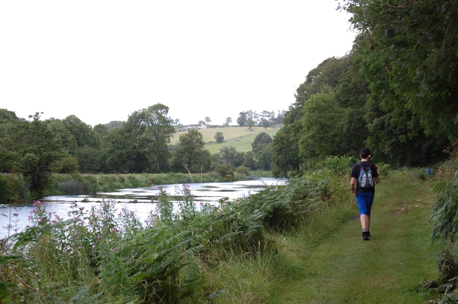 Walking a GrassyPath